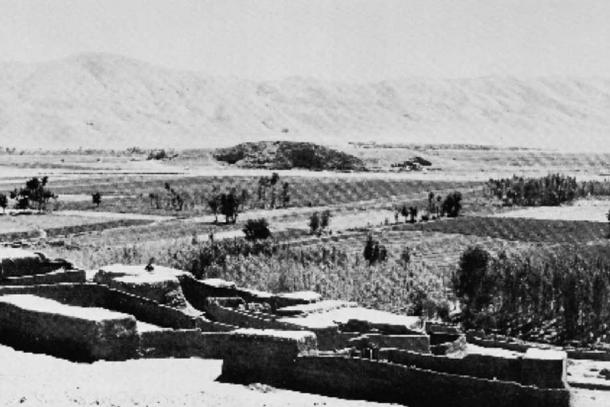 Photo of Godin Tepe at the beginning of excavations in 1965.