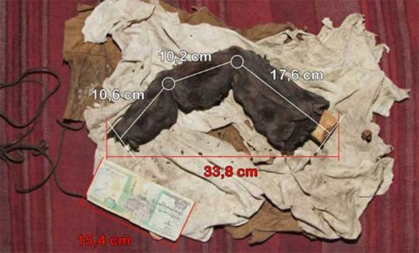 Photo of the mummified finger with measurements, courtesy of Gregor Sporri.