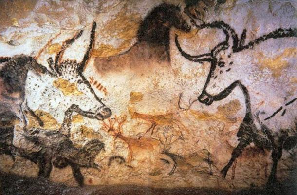 Photograph of Lascaux cave animal painting.