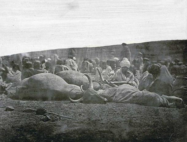 Photograph of a Toda 'green funeral' in the Nilgiri Hills in Tamil Nadu, taken by an unknown photographer from the Madras School of Arts in c. 1871-72.