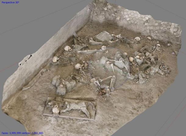 Photomodel of skeletons in situ, Room 10, Oplontis B (Torre Annunziata, Italy). (Credit: N.Terrenato and M. Naglak, University of Michigan)