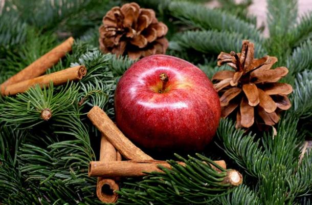 Pine trees were decorated with apples to symbolize the Tree of Life in the Garden of Eden