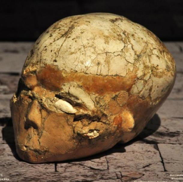 Plastered Skull from Jericho from 7,000 BC discovered by Dame Kathleen Kenyon, 1957. (Merryjack, CC BY-NC-SA 2.0)