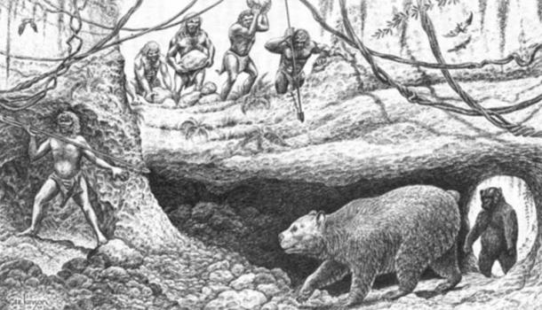 Artist's conception of Pleistocene Vero man and cave bear Arctodus. In Fossil Mammals of Florida by Stanley J. Olsen, Florida Geological Survey Special Publication No. 6, 1959