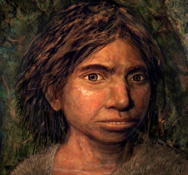 Portrait of a juvenile Denisovan based on a skeletal profile reconstructed from ancient DNA methylation maps. Image credit: Maayan Harel.