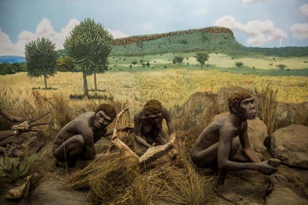 Prehistory, Nairobi National Museum  CC BY 2.0