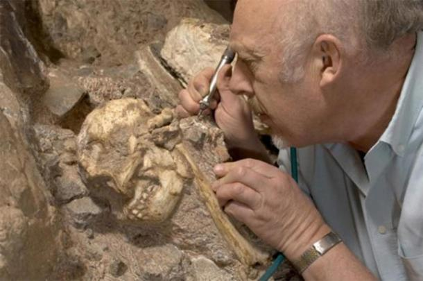 Professor Ron Clarke busy excavating the Little Foot Skull from the Sterkfontein Caves. (Image: Wits University)