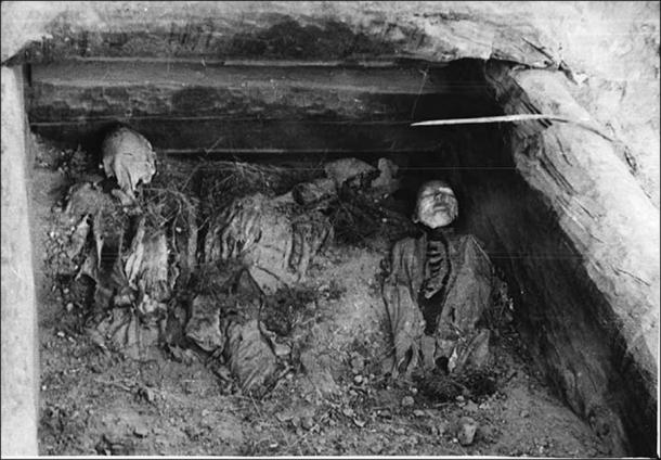 Professor Leonid Kyzlasov excavated the Oglakhty burial ground in 1969 and found this Tashtyk masked man in tomb number four. (©The State Hermitage Museum. Leonid Kyzlasov / The Siberian Times)