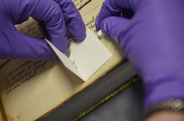 Protein are extracted from the parchment simply by rubbing a PVC eraser on the membrane surface.