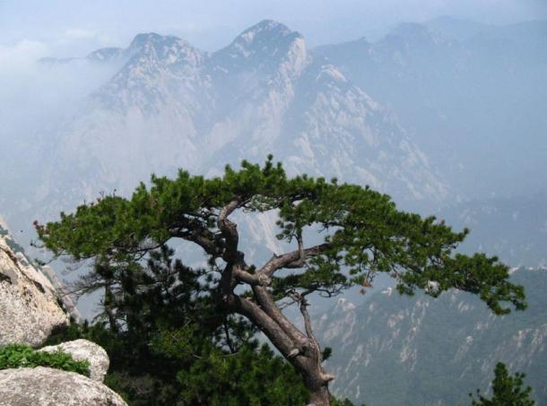 The Qinling Mountains, China