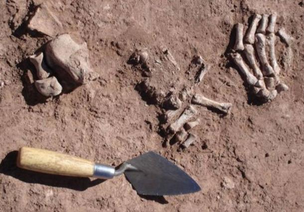 Recently-discovered bones found in an ancient mortuary in Bolivia