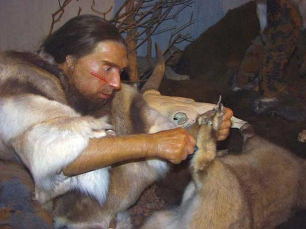 Reconstruction of a Neanderthal in the Neanderthal Museum. (Public Domain)