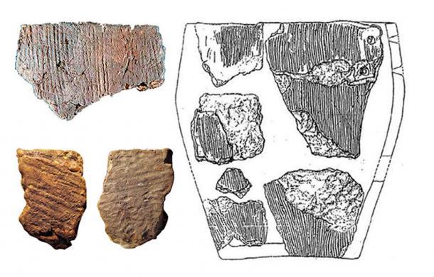 Reconstruction of Osipovka Culture vessel (right) and pot shards found at Gasya and Khummi (left). (Images: Vitaly Medvedev, Oksana Yanshina/ The Siberian Times)