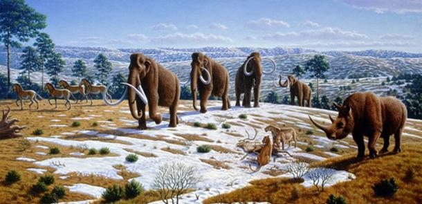 Recreation of a scene in late Pleistocene northern Spain, by Mauricio Antón (CC BY-SA 2.5)