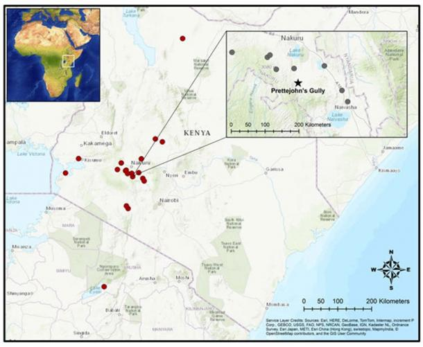 Red dots are archaeological sites in the authors' study. Gray dots mark selected Rift Valley sites. Prettejohn's Gully geological survey, marked by a black star, produced the oldest ancient DNA in Kenya. Elizabeth Sawchuk, CC BY-ND (The Conversation)