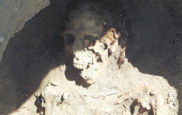 Redheaded female found at Fag el-Gamous