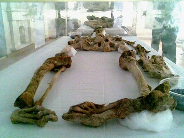 Remains of Saltman 2 on display in Zanjan. One of the Saltmen found in 2004.