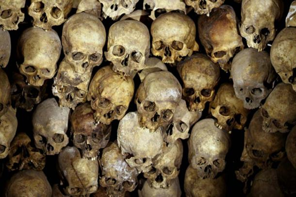 Representational image of human skulls. How many more cases have suffered similar dismissal due to their anomalistic circumstances? (CC0)