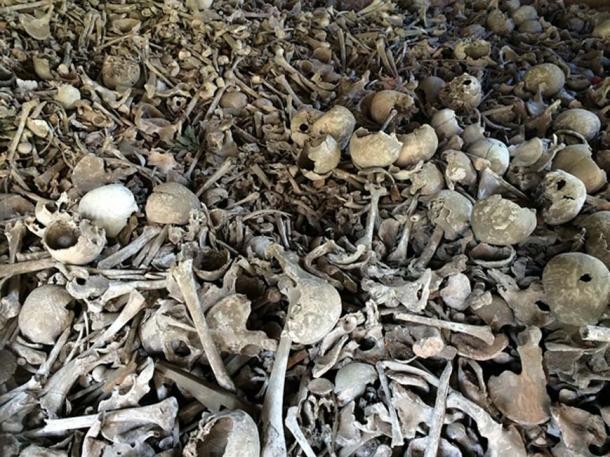 Representational image of various human bones in a pit. (CC0)