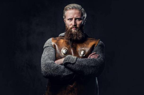 Representative image of Viking Bjorn Ironside