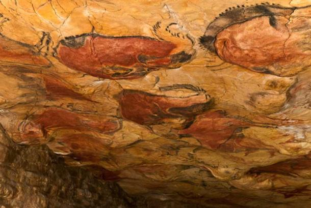 Reproduction of the cave ceiling paintings at Altamira Museum.