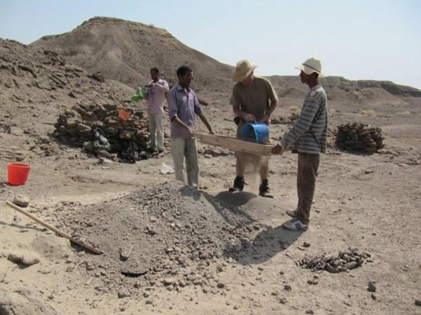 Researchers examine soil at the Ledi-Geraru site in Ethiopia, where Homo jawbone, known as LD 350-1, was discovered.