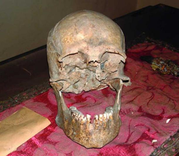 Researchers want to know for certain if this is the skull of Pliny the Elder