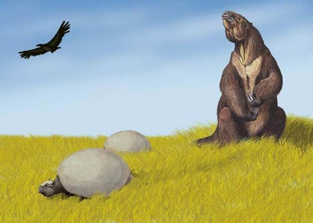 Restoration of Glyptodon in South American environment, alongside Megatherium or ground sloth. (CC BY-SA 3.0)