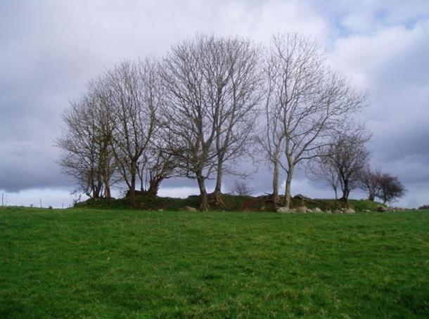 Ringfort at Cabragh, Ireland. Ringforts are common in the Irish countryside.