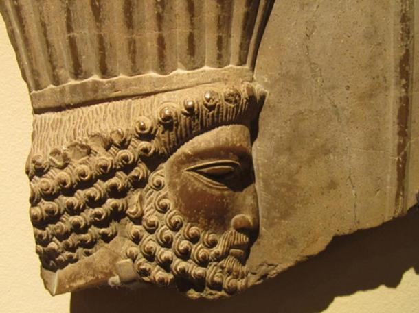 Sargon the Great. (Dave LaFontaine/CC BY NC ND 2.0)