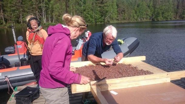 Satu Koivisto and Jørgen Dencker examining bottom sediments. Image: Eveliina Salo/Nordic Maritime Group.
