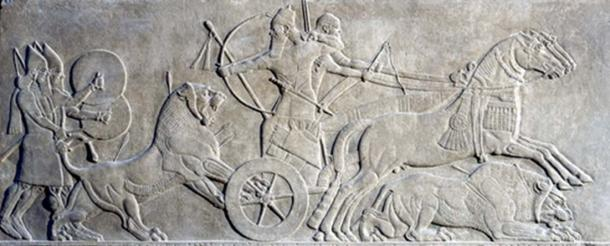 Sculpted reliefs depicting Ashurbanipal II hunting lions.