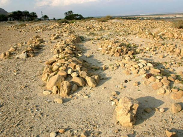 Section of the Qumran cemetery.