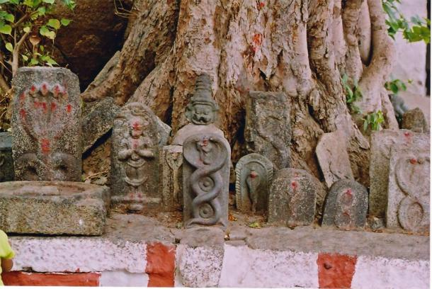 Serpent deity reliefs in India. (Dineshkannambadi / CC BY-SA 3.0)