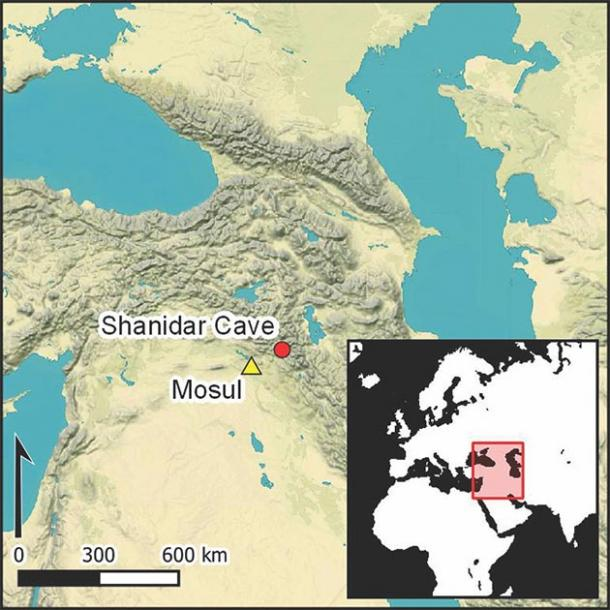 Shanidar Cave became an iconic Palaeolithic site following Ralph Solecki's discovery of Neanderthal remains. (Antiquity Publications Ltd)