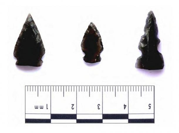 Sharp arrowheads made of volcanic-glass (obsidian) founds at ancient sites in Guatemala. Two such arrowheads have been found to have traces of human blood.