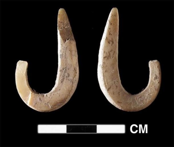 Shellfish hook recovered from the site of Lene Hara dating to 11,000 years ago. An earlier, less complete example was recovered from Asitau Kuru, indicating an early marine specialization for Pleistocene era humans arriving on these islands. (Sue O'Connor)