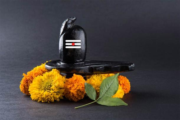 Lingam compuesta de piedra negra decorada con flores y hojas de bael conocida como Aegle marmelos (StockImageFactory / Adobe Stock)
