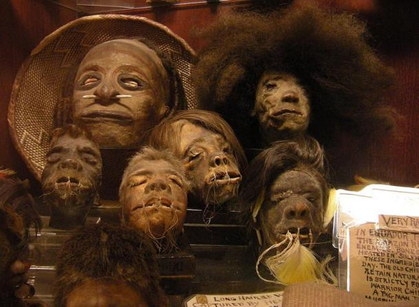 """Shrunken heads in the permanent collection of """"Ye Olde Curiosity Shop"""", Seattle, Washington state, U.S."""