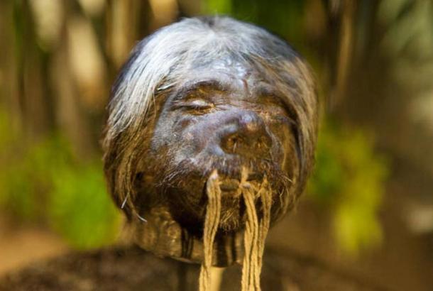 Shrunken head, Ecuador.