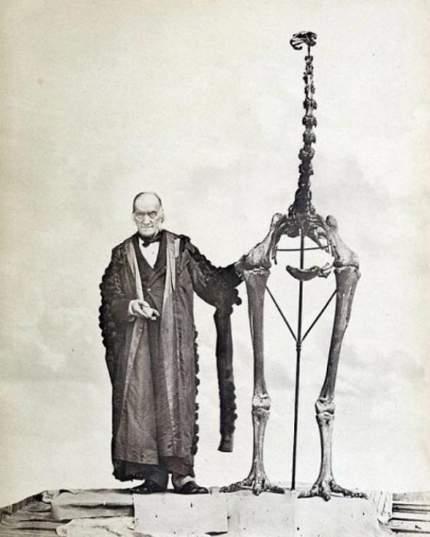 Sir Richard Owen standing next to a moa skeleton and holding the first bone fragment belonging to a moa ever found.