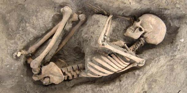 Skeletal remains found in Wadi Faynan 16 (Image: Courtesy of Steven Mithen)