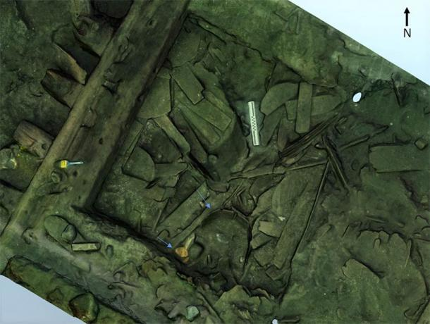 Skeletal remains of the ancient sturgeon were found in a barrel buried in silt in the hull of the shipwreck. (Lund University / Science Direct)