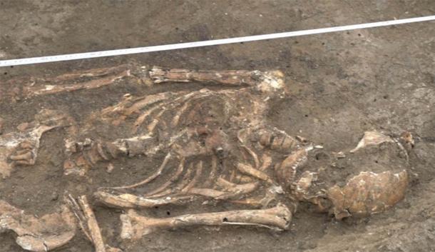 Skeleton of high status Sarmatian warrior discovered near Krasnodar, Russia. (Russian Highways)