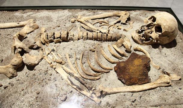 Skeleton in the vampire grave of Sozopol, on display at the National History Museum in Sofia.