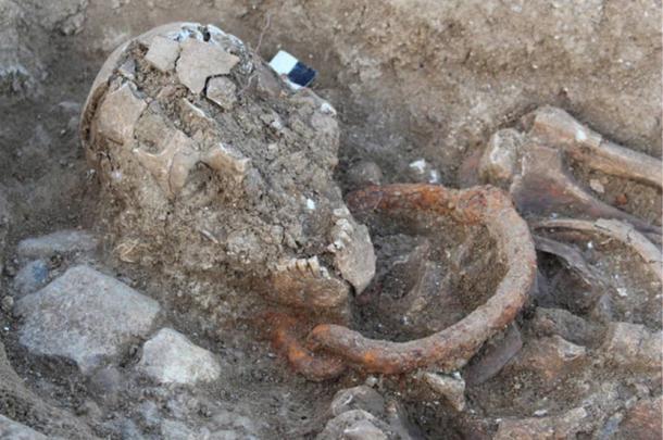Skeleton with Iron bondage collar around the neck