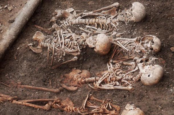 """Skeletons unearthed during archaeological excavation, """"Cathedral Place"""" Saint Poelten, Austria ("""