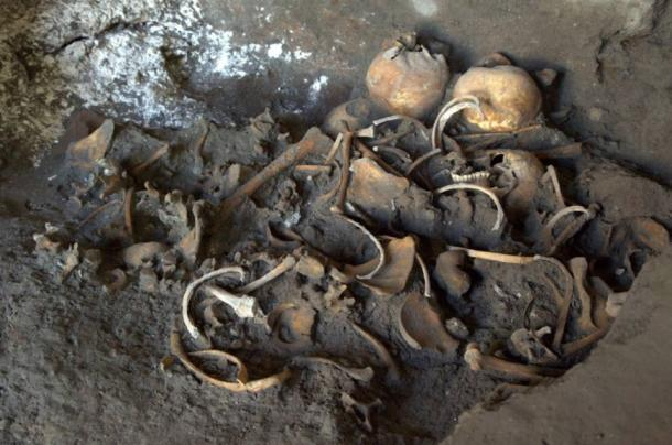 Skeletons found in a shop near the Porto Ercolano at Pompeii.