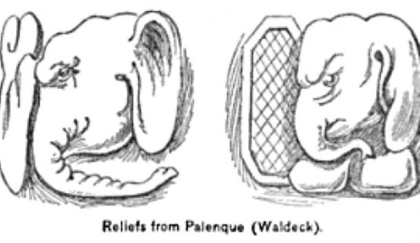 Sketch of elephants depicted in reliefs in Palenque ruins, Mexico. Image Credit: W. B. Scott (Author provided)