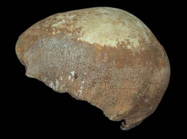 Skull discovered in Manot Cave in 2015.